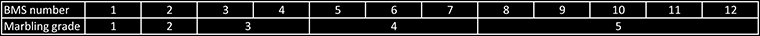 BMS score versus Marbling Score in Japanese beef grading table