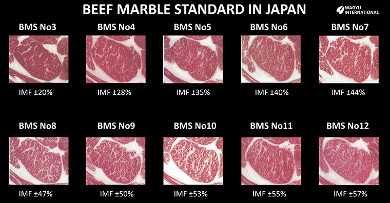 BMS number and approximate IMF %