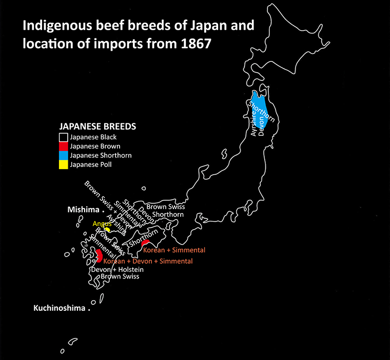 Map of Japan showing origin of native cattle breeds and where imported breeds were used from 1878 to 1910