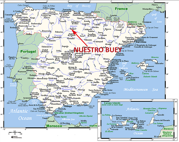Small Map Of Spain.Wagyu Beef Cattle Breed In Spain
