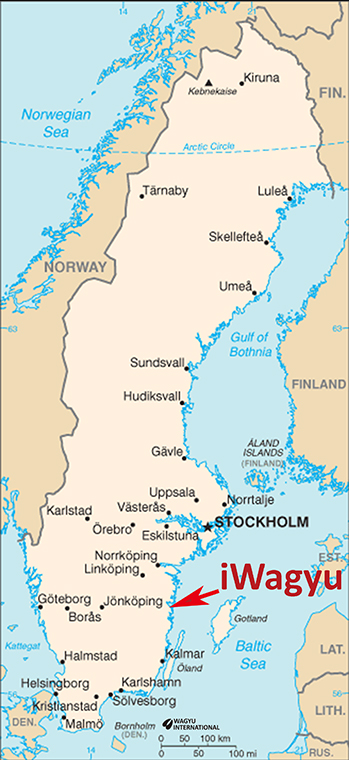 Wagyu Beef Cattle Breed In Sweden - Sweden usa map