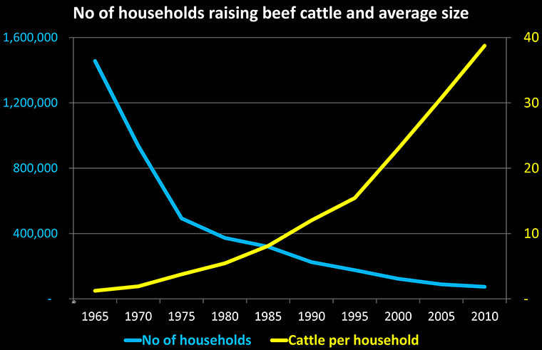 Chart of number of households in Japan raising beef cattle and average number of beef cattle per farm